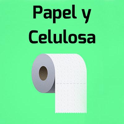 papel y celulosa - Inicio